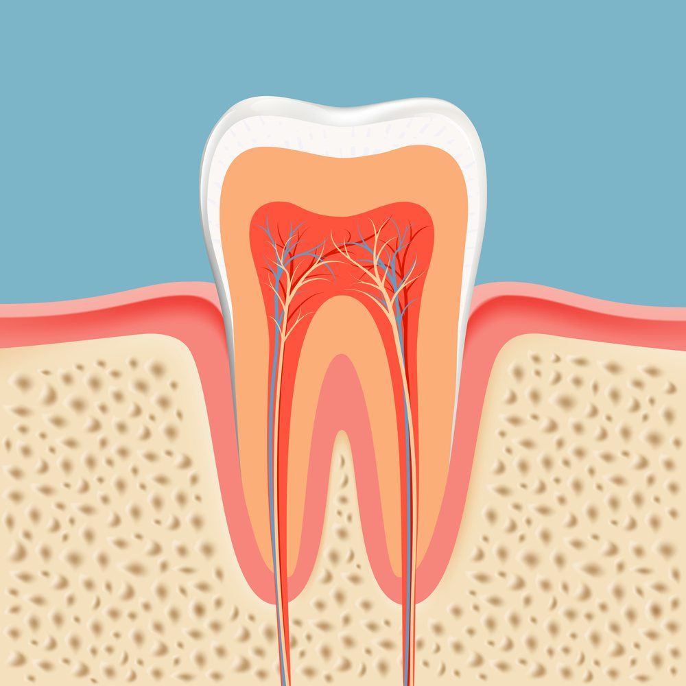 Treat Tooth Decay